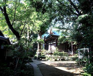IMG_3801奥沢神社001.JPG