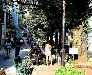 IMG_3810自由が丘緑道風景002.JPG