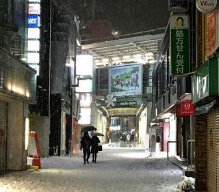 IMG_5252雪の自由が丘001.JPG