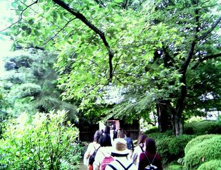 TS3C1483菅原神社付近で散策する人達001.JPG