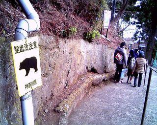 TS3C2880大山阿夫利神社付近熊看板001.JPG